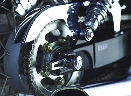 Chrome chain protector