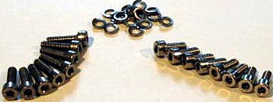 Carburetor stainless steel screws
